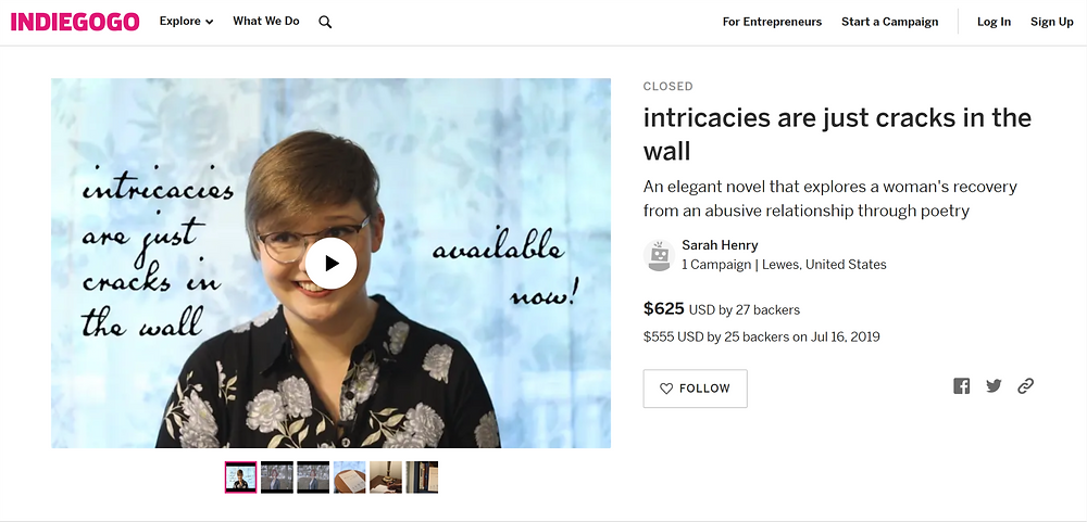 screen shot of intricacies are just cracks in the wall indiegogo campaign