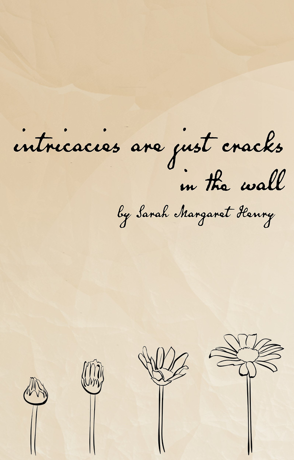 cover of intricacies are just cracks in the wall