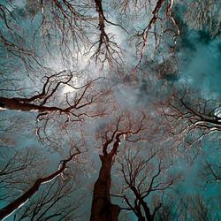 Philipp Schuster Photography | Foto