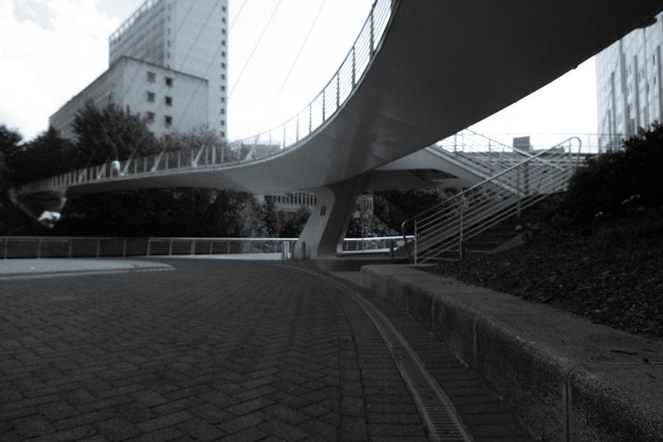 IMG_0591.JPG