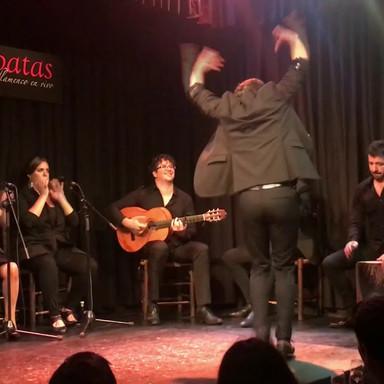 Fuego Flamenco XIV: Reditum
