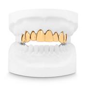 Produktfoto Zahnabdruck Goldzähne