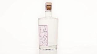 Erklärvideo Flasche Gin