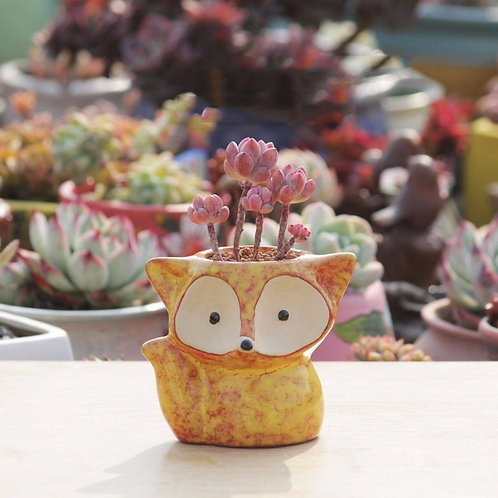 Foxy Lady Mini Plant Pot