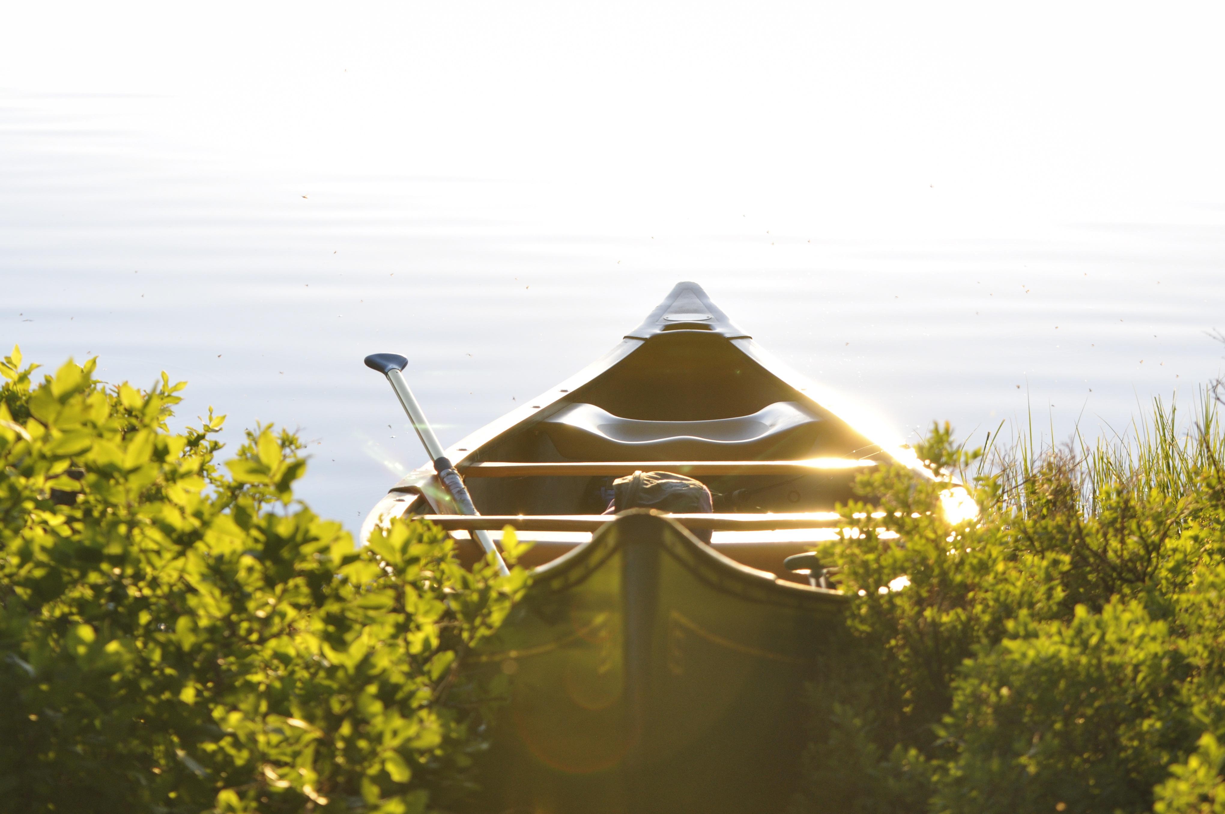 row-boat-381223