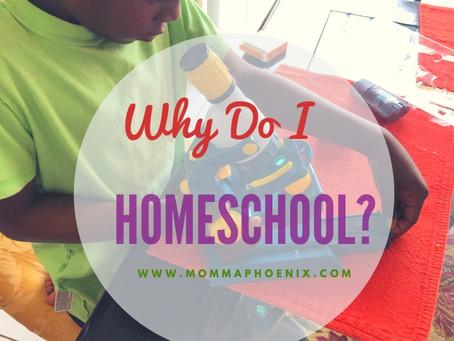 Why Do I Homeschool?