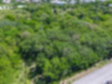 3915 Tupelo Ln San Antonio TX-large-002-1-Aerial Views1-1334x1000-72dpi.jpg