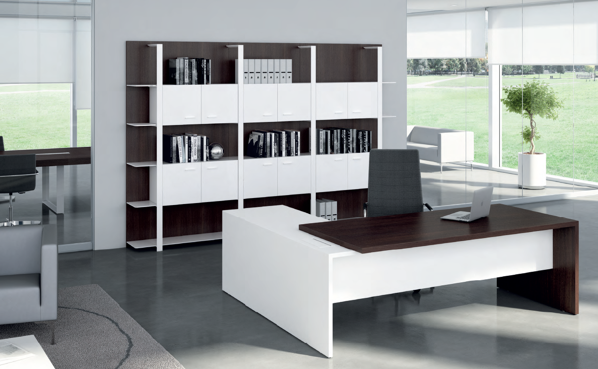 T45 executive system, AreaTonic