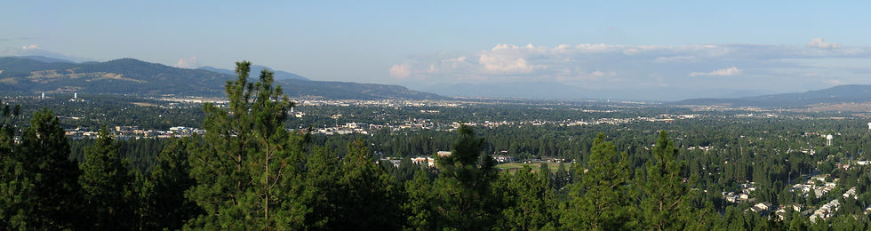 Al Merkel Valley city council