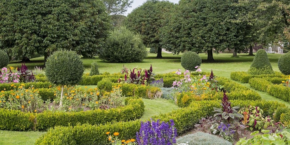 Hampshire garden with hedges and flowers for National Garden Scheme
