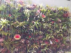 Jardin Vertical.jpg
