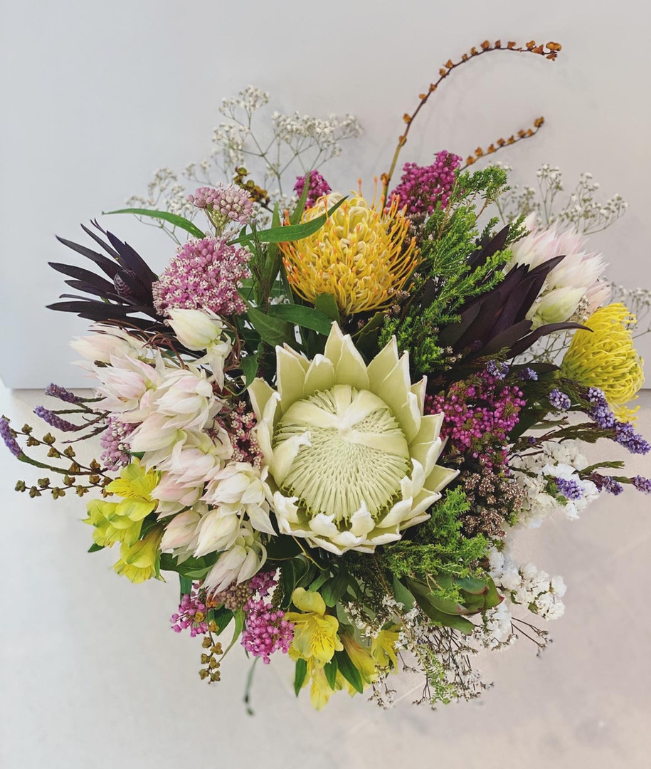 Vibrant with proteas