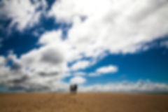 silhouettes-3363872_1920.jpg