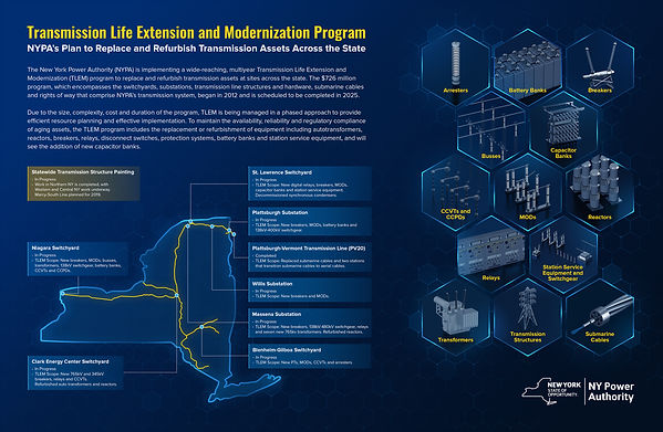 NYPA Ops TLEM Overview Infographic_s.jpg