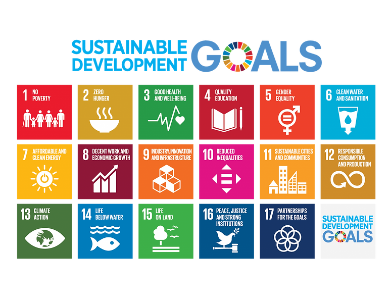 UN Development Goals.png