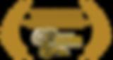 BEST-SHORTS-Recognition-logo-gold.png