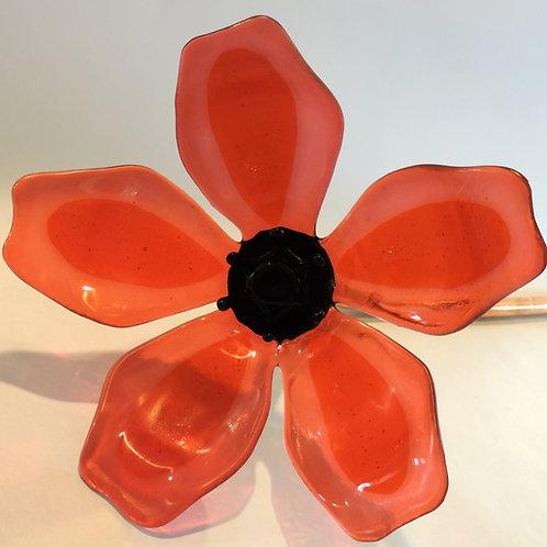 Carnelian Pink & Orange Flower