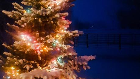 Photo Minute...Holiday Theme