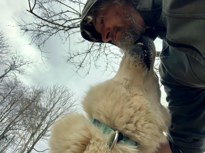 alpha-the-white-swiss-shepherd (7).jpg
