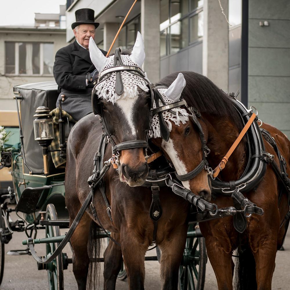 Standesamt Dübendorf, Pferdekutsche, Hochzeit Dübendorf