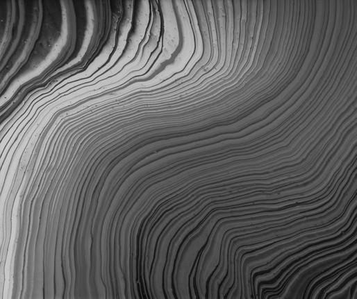 O enigma das ondas por Silviano Santiago