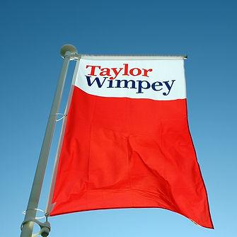 FLAG TAYLOR