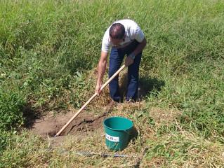 Sindicato Rural e Epamig reforçam importância da análise do solo
