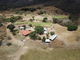 Produção de cachaça é oportunidade de renda extra em Montes Claros