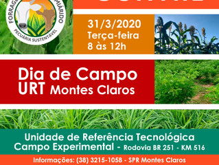 EVENTO CANCELADO! Dia de Campo sobre forrageiras será realizado em março