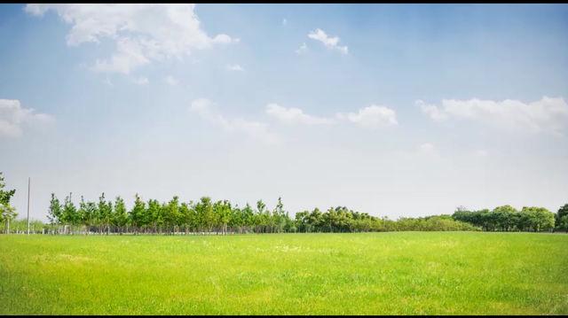 Sindicato Rural alerta para os riscos da brucelose