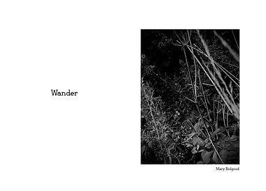 Mary Wander.jpg
