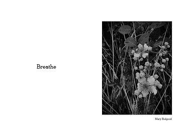 Mary Breathe.jpg