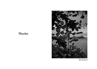 Mary Wonder.jpg