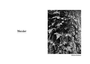 Wander name.jpg