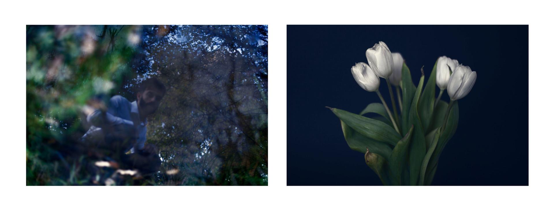 Morpheus - Both hidden and openly