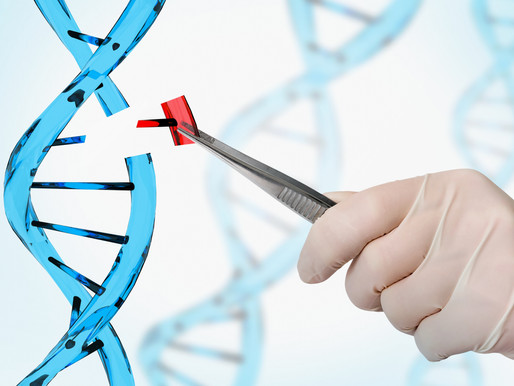 Scientists Are Now Capable of Editing The Genes Inside A Patient Using A CRISPR Tool