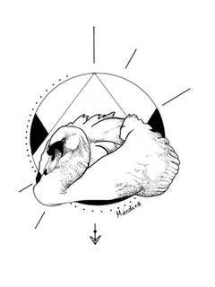Swan in circle