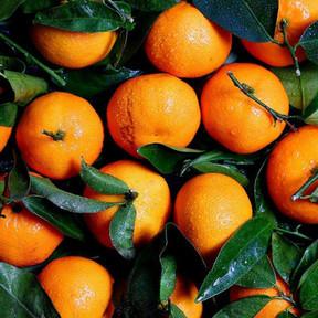 bienfait de la clementine