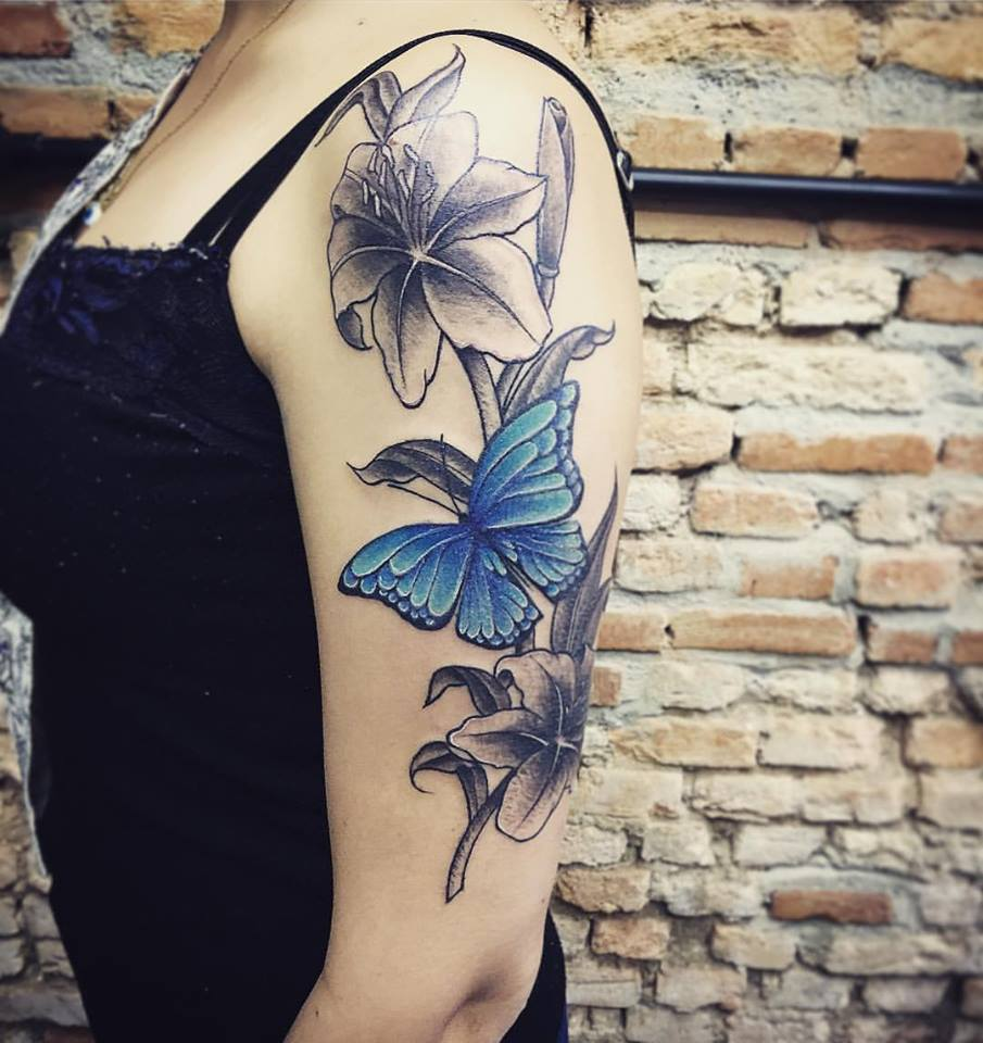 Flores eBorboleta