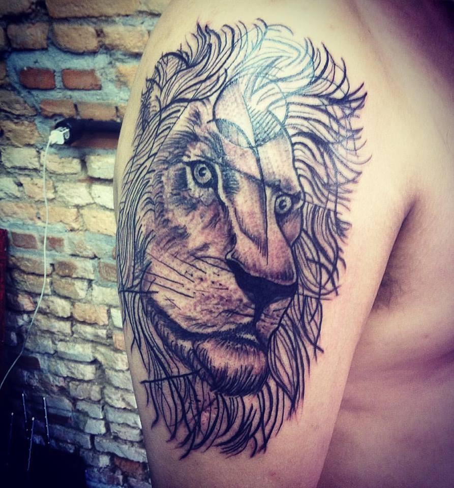 Leão Sketch