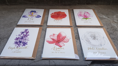 Language of flowers set of six greeting cards m4hsunfo
