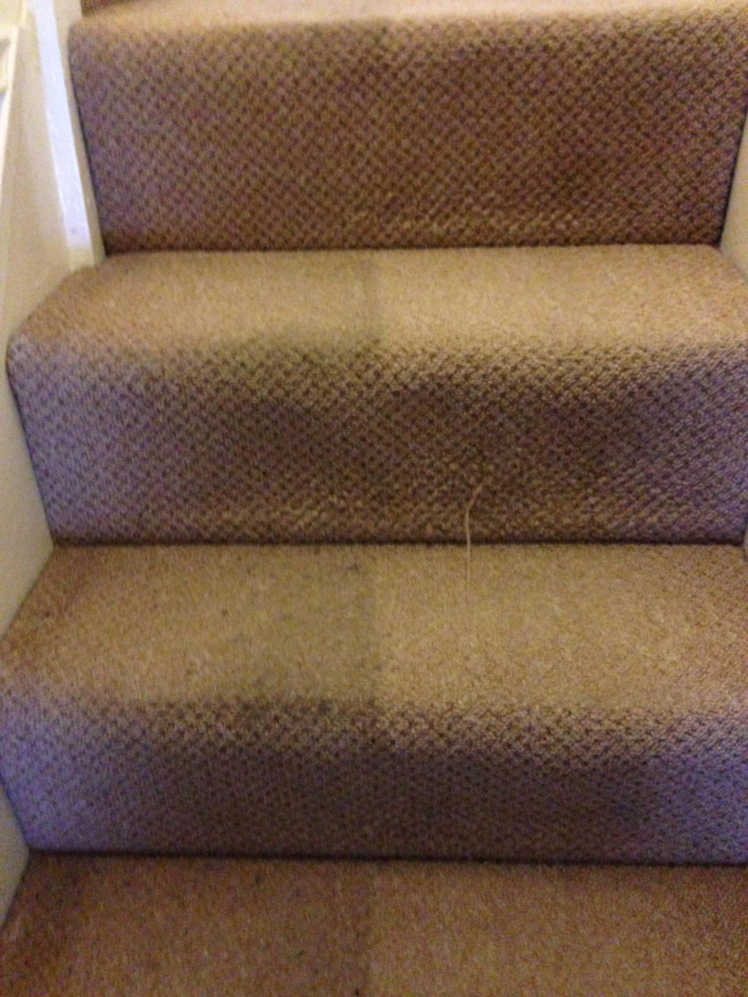 Stairs (1).jpeg