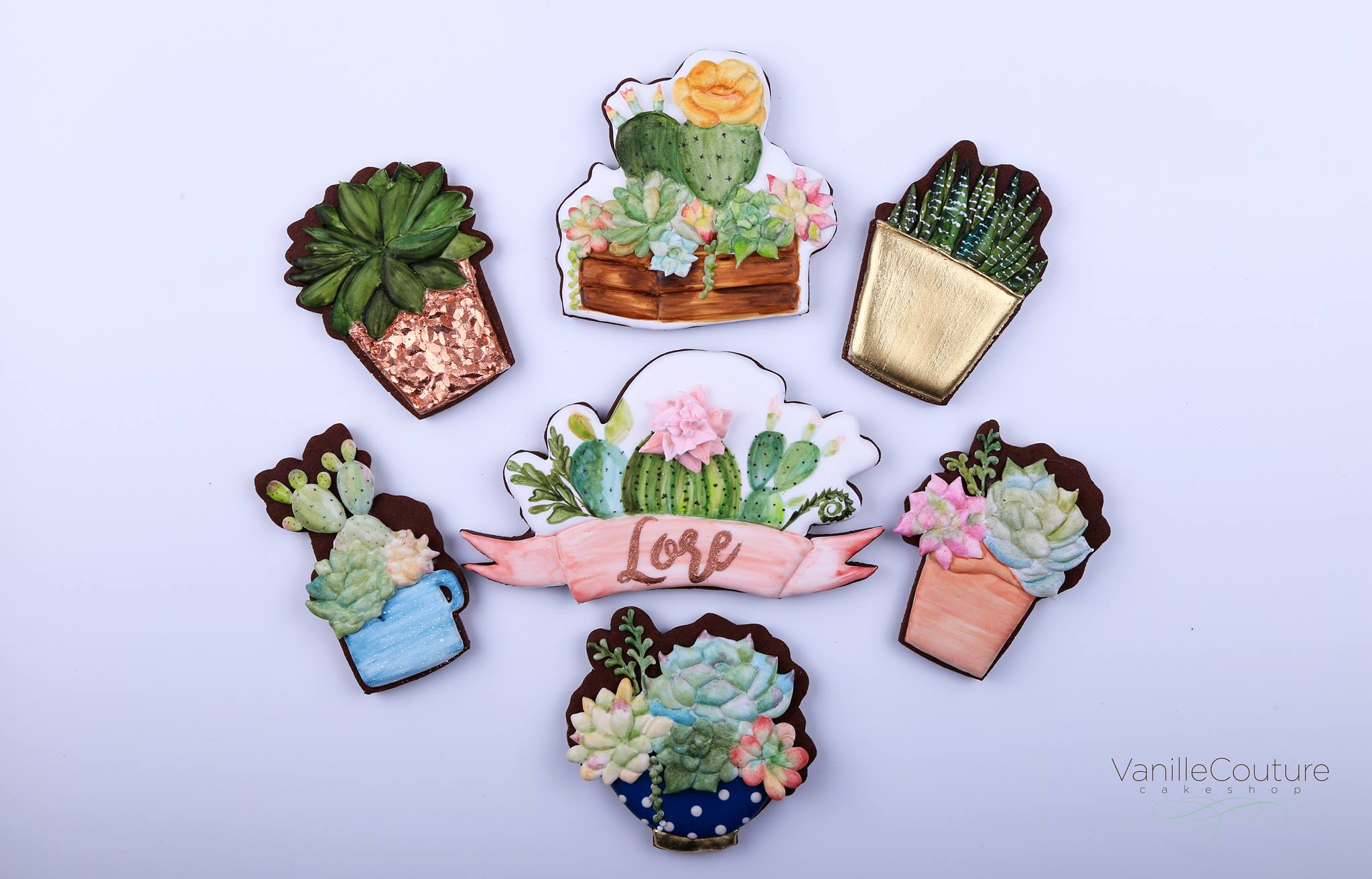 Galletas plantas