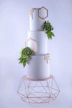 Pastel de boda con suculentas