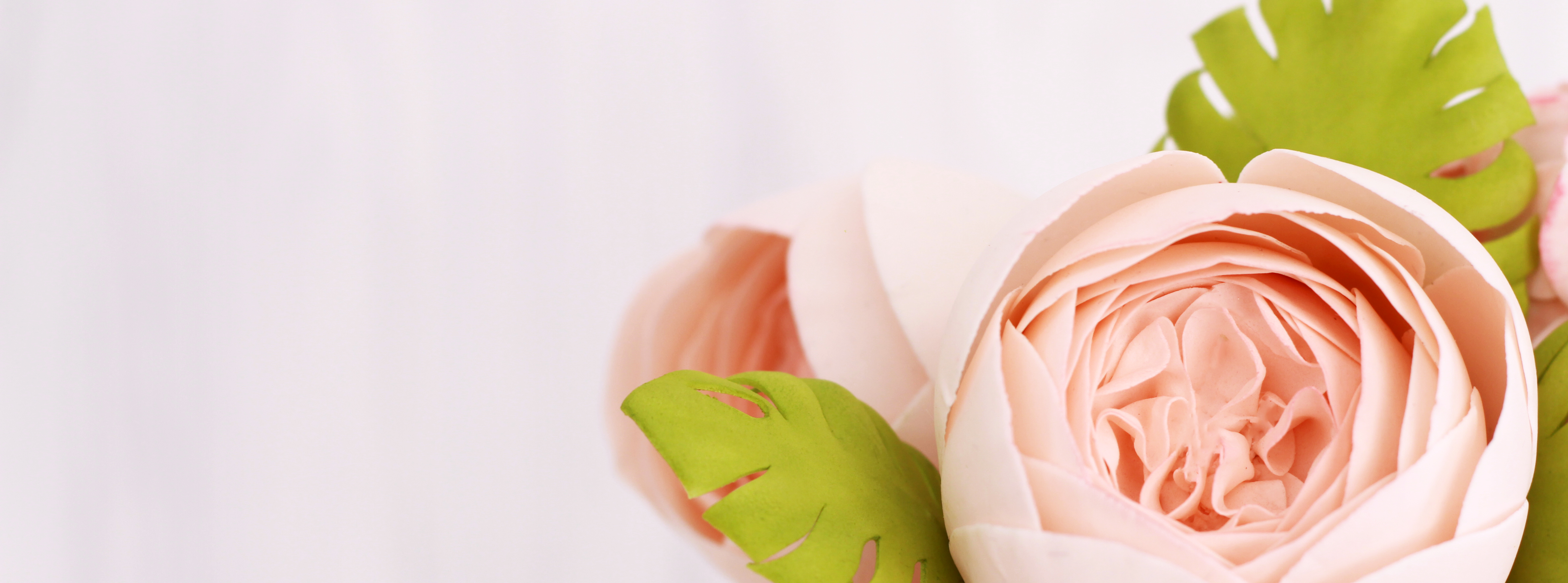 English roses close_WILY1300.jpg