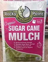 sugar cane.PNG