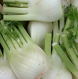 Fennel Bulbing.PNG