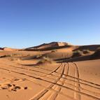 Volta a les dunes 03.jpg