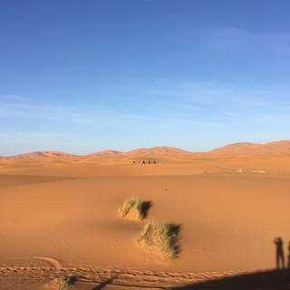 Volta a les dunes 04.jpg