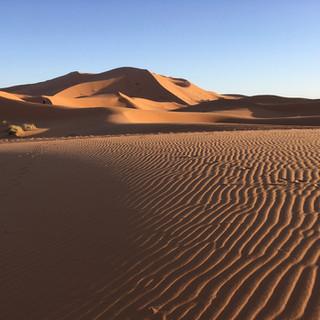 Volta a les dunes 05.jpg